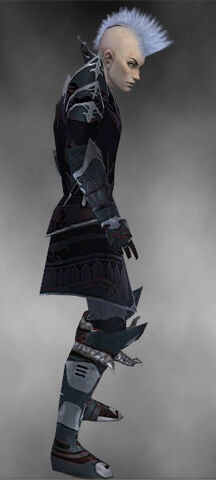 File:Necromancer Deldrimor Armor M gray side.jpg
