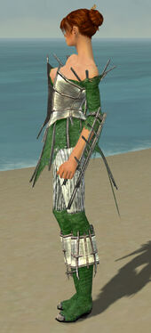 Elementalist Primeval Armor F dyed side