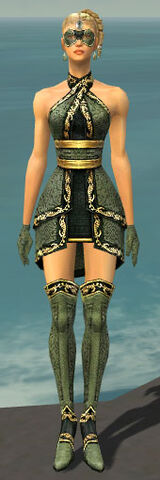 File:Mesmer Shing Jea Armor F gray front.jpg