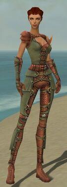 Ranger Ascalon Armor F gray front