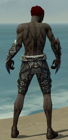 File:Necromancer Monument Armor M gray arms legs back.jpg