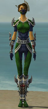 Assassin Norn Armor F dyed front