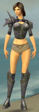 Warrior Platemail Armor F gray chest feet front