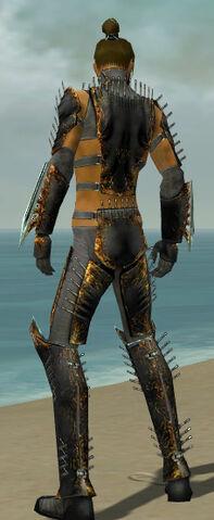 File:Assassin Exotic Armor M gray back.jpg