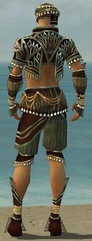 File:Ritualist Vabbian Armor M gray back.jpg