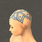 File:Monk Elite Luxon Armor F dyed head side.jpg