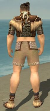 Monk Norn Armor M gray chest feet back