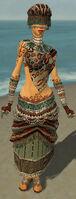 Ritualist Elite Exotic Armor F gray front