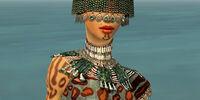 Ritualist Elite Exotic armor