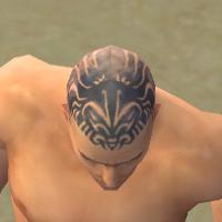 File:Monk Primeval Armor M gray head front.jpg