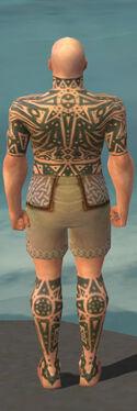 Monk Star Armor M gray chest feet back