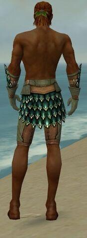 File:Ranger Drakescale Armor M gray arms legs back.jpg