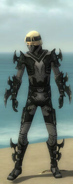 Assassin Kurzick Armor M gray front
