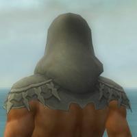 File:Dervish Elite Sunspear Armor M gray head back.jpg