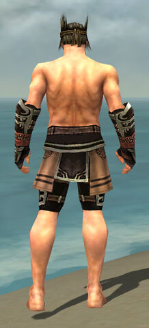 File:Warrior Ancient Armor M gray arms legs back.jpg