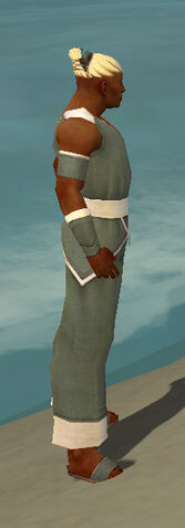 File:Monk Ascalon Armor M gray side.jpg