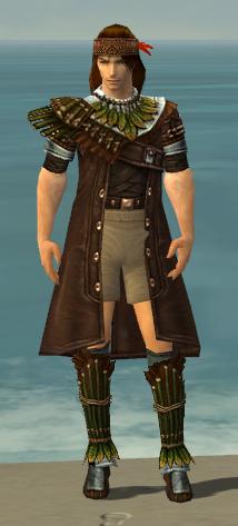 File:Ranger Druid Armor M gray chest feet front.jpg
