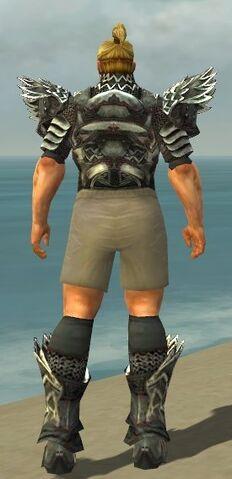 File:Warrior Silver Eagle Armor M gray chest feet back.jpg