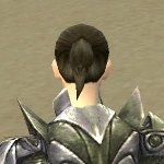File:Warrior Templar Armor F gray back clipping issue.jpg