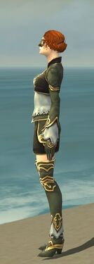 Mesmer Monument Armor F gray side