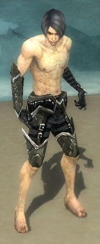File:Necromancer Elite Profane Armor M gray arms legs front.jpg
