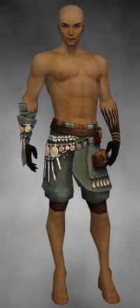 File:Ritualist Luxon Armor M gray arms legs front.jpg
