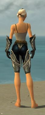 Warrior Elite Sunspear Armor F gray arms legs back