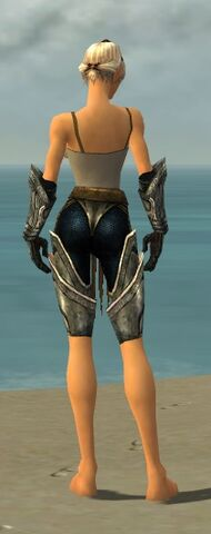File:Warrior Elite Sunspear Armor F gray arms legs back.jpg