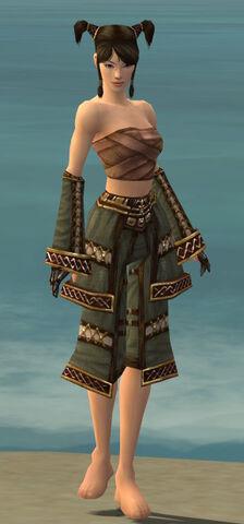 File:Monk Elite Kurzick Armor F gray arms legs front.jpg