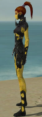 Assassin Kurzick Armor F dyed side