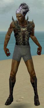 Necromancer Istani Armor M gray chest feet front