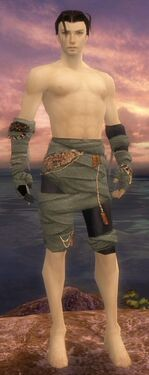 Ritualist Ancient Armor M gray arms legs front