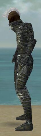 File:Necromancer Necrotic Armor M gray side.jpg