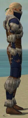 File:Ranger Fur-Lined Armor M dyed side.jpg