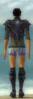Elementalist Elite Stormforged Armor M gray chest feet back