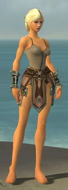 Warrior Gladiator Armor F gray arms legs front