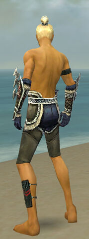 File:Assassin Norn Armor M gray arms legs back.jpg