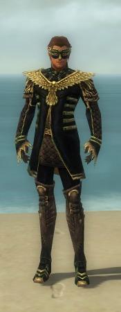 File:Mesmer Vabbian Armor M dyed front.jpg