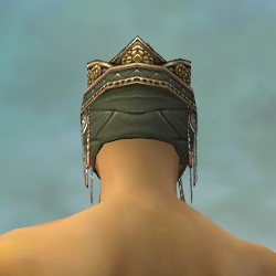 File:Ritualist Elite Imperial Armor M gray head back.jpg