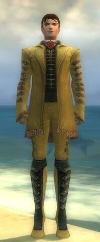 File:Mesmer Elite Enchanter Armor M dyed front.jpg