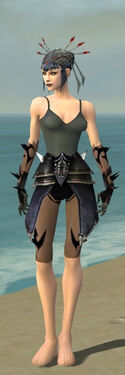 Necromancer Obsidian Armor F gray arms legs front