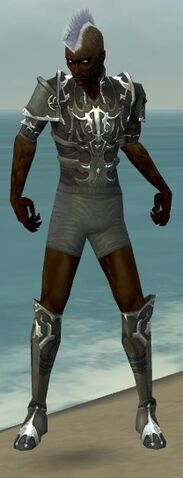 File:Necromancer Tyrian Armor M gray chest feet front.jpg