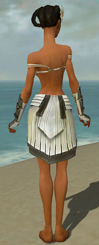 File:Paragon Ancient Armor F gray arms legs back.jpg