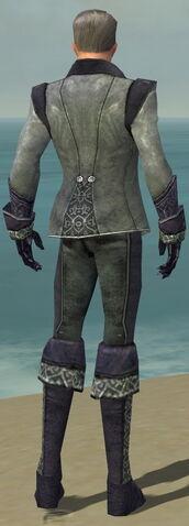 File:Mesmer Elite Elegant Armor M dyed back.jpg