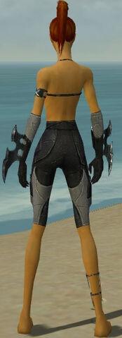 File:Assassin Kurzick Armor F gray arms legs back.jpg