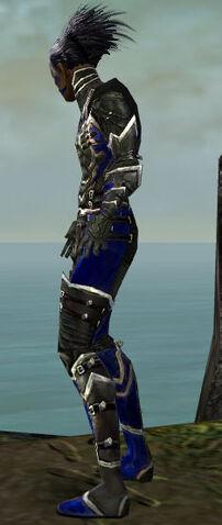 File:Necromancer Kurzick Armor M dyed side.jpg