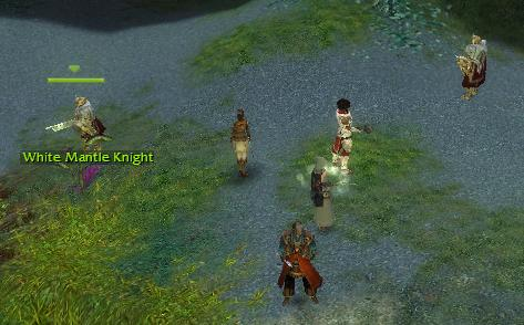 File:The Wilds Knights.jpg