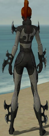 File:Assassin Kurzick Armor F gray back.jpg