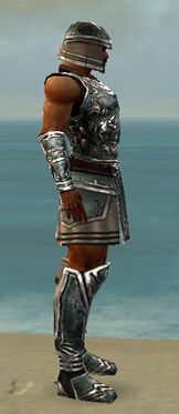 Warrior Istani Armor M gray side