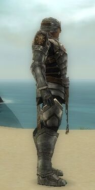 Warrior Sunspear Armor M gray side